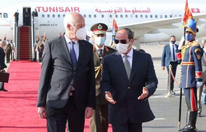 مباحثات مصرية تونسية لدعم القضية الليبية وتفعيل الدور العربي