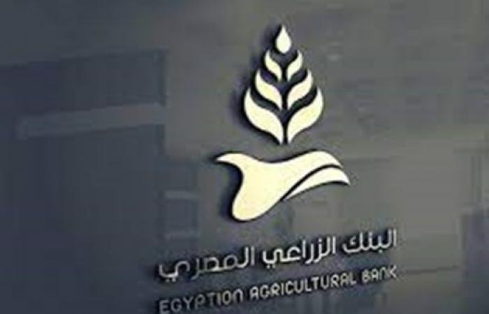 البنك الزراعي: نمتلك مساحات تخزينية مليون طن لاستقبال الأقماح المحلية هذا العام