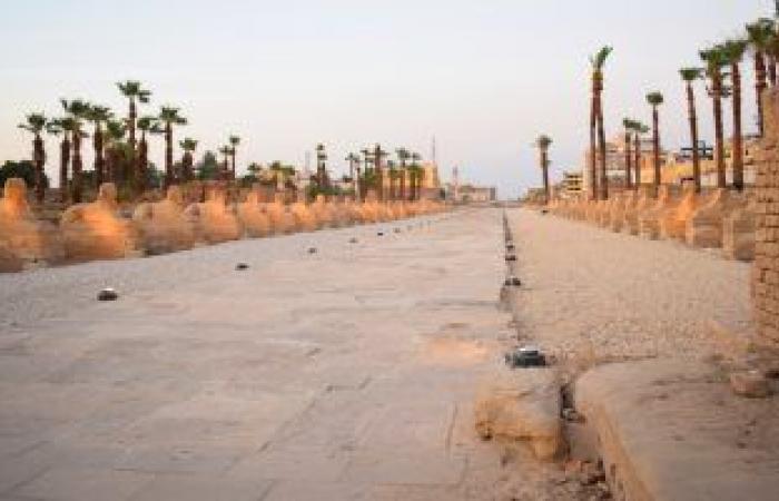 الأقصر تستعد لافتتاح المشروع القومى لإحياء طريق الكباش نهاية يونيو المقبل