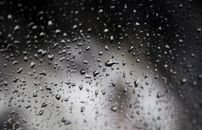 بالفيديو.. الزعاق: سقوط أمطار السماك.. ويعقبها «سيف الرحمة»