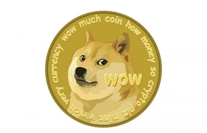 يمكنك الآن استخدام عملة Dogecoin الرقمية لشراء المنتجات في Newegg