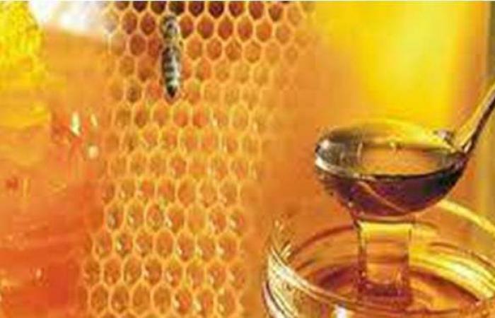 ضبط 17 طن عسل نحل غير صالح للاستهلاك الآدمى داخل مصنع ببولاق الدكرور
