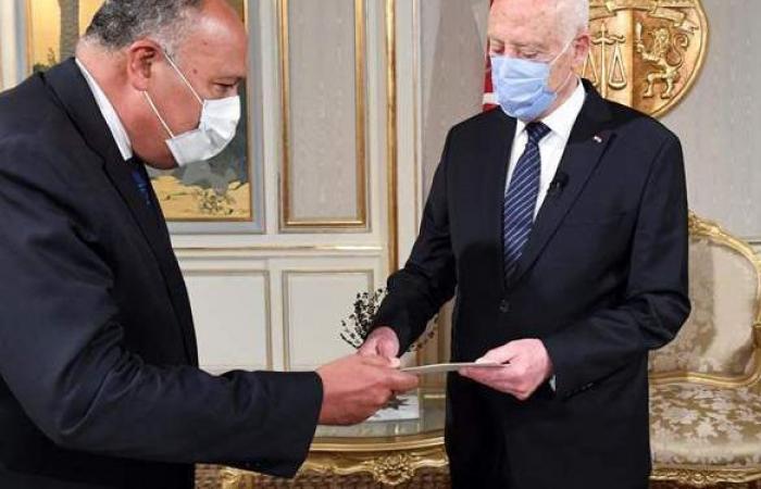 في نهاية جولته الأفريقية.. وزير الخارجية يُسلم رئيس تونس رسالة من السيسي