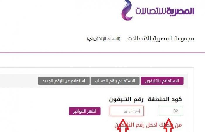 """طرق دفع فاتورة التليفون الأرضي لشهر أبريل من موقع المصرية للاتصالات """"WE"""""""