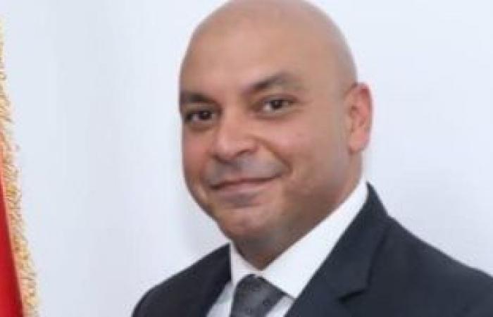 النائب محمود القط: الدولة تتعامل مع إجراءات مواجهة كورونا بمعايير عالمية