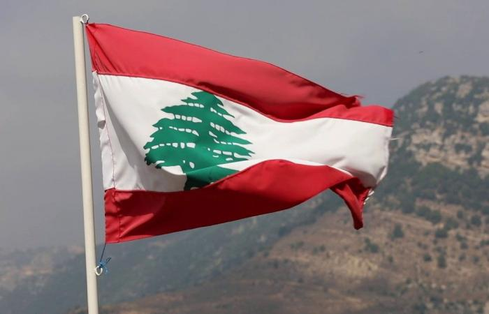 لبنان.. القبض على شقيقين للاشتباه في تهريبهما مخدرات إلى المملكة