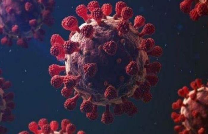 11063 تلقوا لقاح كورونا بالقليوبية و78 حالة إصابة جديدة بالقليوبية