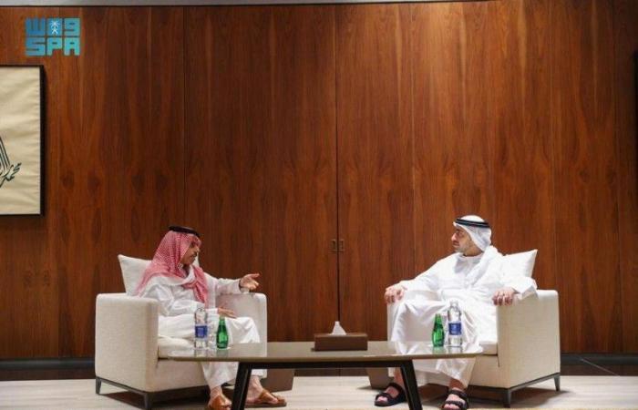 وزير الخارجية السعودي يبحث تعزيز العلاقات الثنائية مع نظيره الإماراتي
