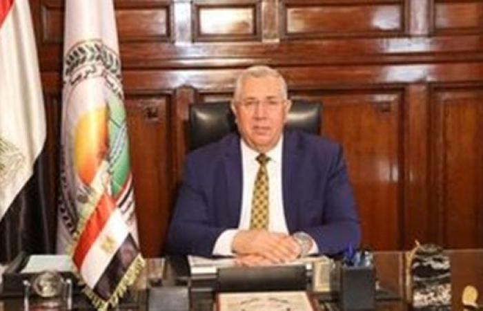 وزير الزراعة: حصاد 1.2 مليون فدان قمح وتوريد مليون طن