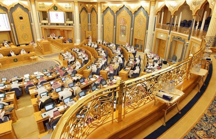 7 ملفات تتصدر اجتماع لجنة «اقتصاد الشورى» مع رئيس هيئة الرقابة النووية والإشعاعية
