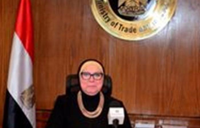 """وزيرة الصناعة تبحث مع """"نيسان العالمية"""" خططها الاستثمارية في مصر"""