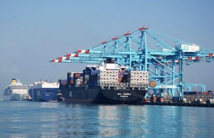 تداول 25 سفينة بضائع عامة وحاويات بموانئ بورسعيد