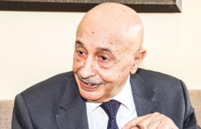 """""""صالح"""": إجراء الانتخابات ليبيا بالقرار رقم 5 حال عدم التوافق على قاعدة دستورية"""