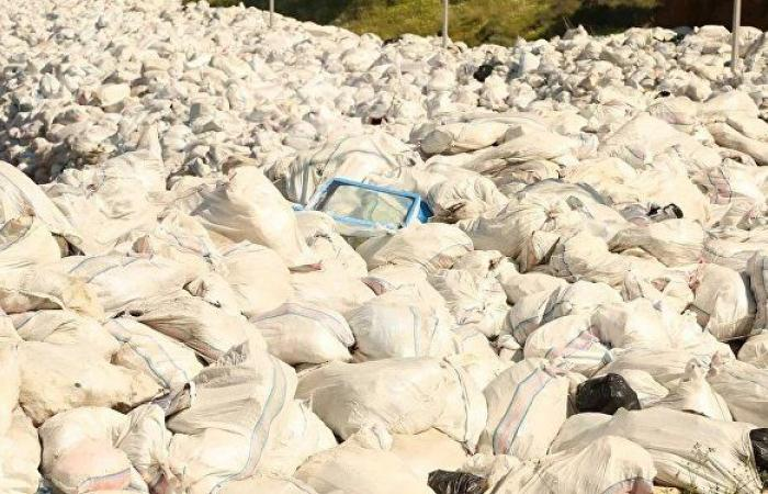 النفايات البلاستيكية المتزايدة مشكلة تستوجب الحل... فيديو