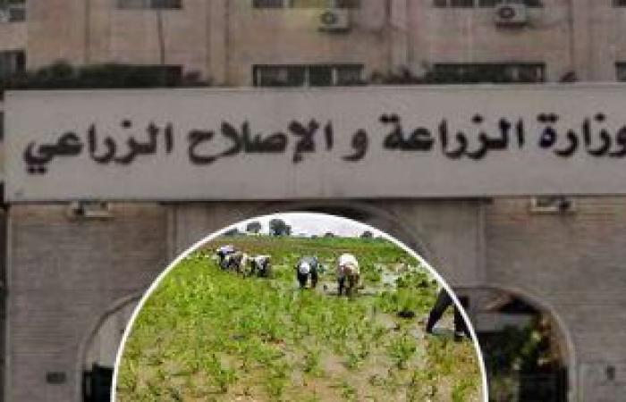 """""""الزراعة"""": 29 حالة تعدى على الأراضى الزراعية خلال الإجازة بمساحة فدان و14 قيراط"""