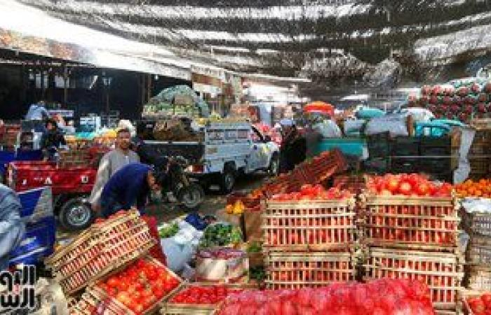 أسعار الخضروات الجملة اليوم.. الطماطم تتراوح بين 2-5 جنيهات
