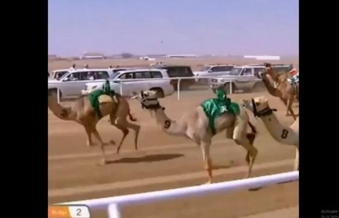 عبدالعزيز بن سعود لمعلق مهرجان ولي العهد للهجن: سلامك وصل والكأس سعودي