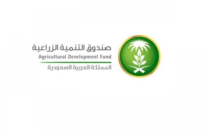 صندوق التنمية الزراعية: 15 شرطًا للحصول على القروض التشغيلية