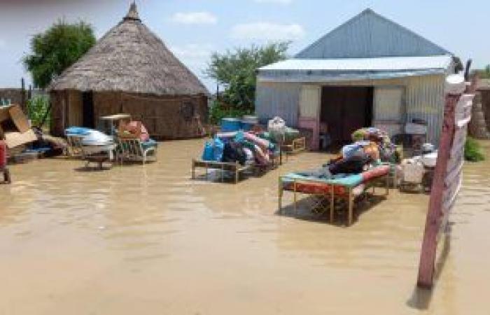 """الرى السودانية تحذر من فيضان وشيك لنهر """"الدندر"""" بعد ارتفاع كبير فى منسوبه"""