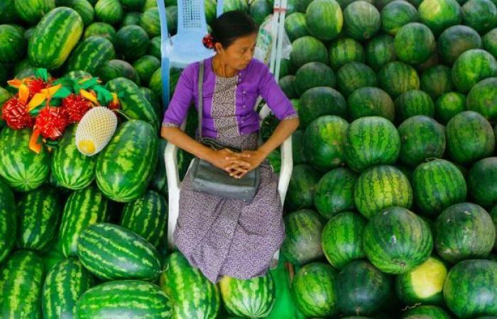 متى يمكن أن يكون تناول البطيخ خطيرا؟