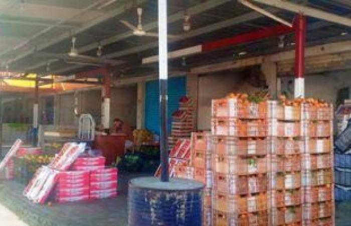 """""""الخضروات والفاكهة"""": إنتاج العروة الشتوية أدى لانخفاض أسعار الطماطم والليمون"""