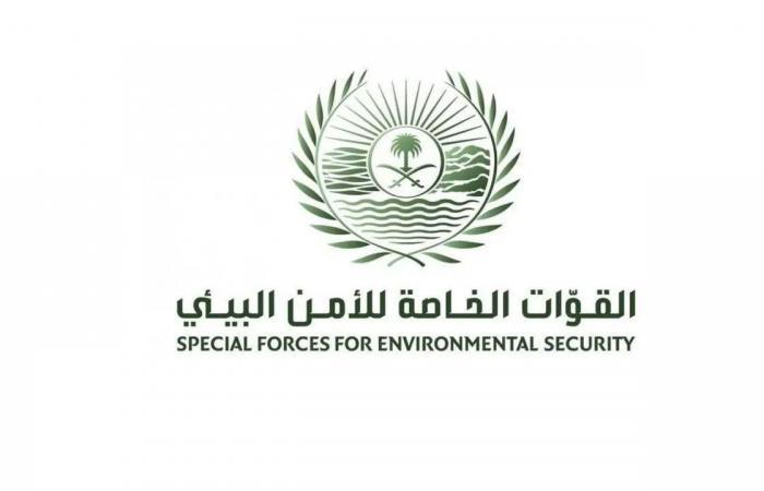337 خريجًا في الدورة التأهيلية للفرد الأساسي لمنسوبي «الأمن البيئي»