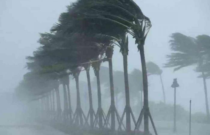 بسبب الإعصار.. «السفارة في اليابان» تطالب السعوديين بالحذر