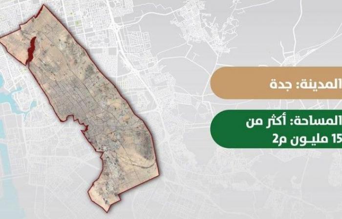«الأراضي البيضاء»: تسجيل أرضين في جدة بمساحة 15,3 مليون م2.. وفرض الرسوم بأثر رجعي