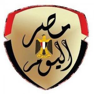 مشجع جزائري يرفع علم مصر في استاد القاهرة قبل نهائي أمم أفريقيا