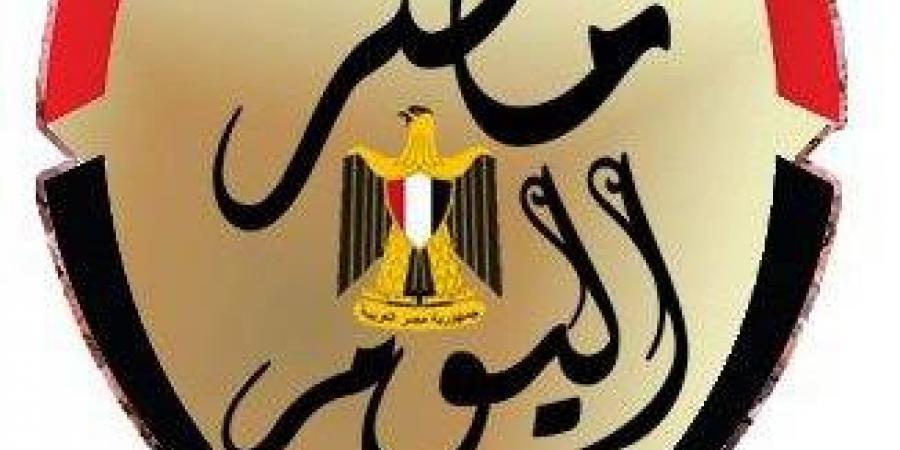 صور .. مركز شباب الجزيرة يستعد لعرض مباراة مصر ومالي